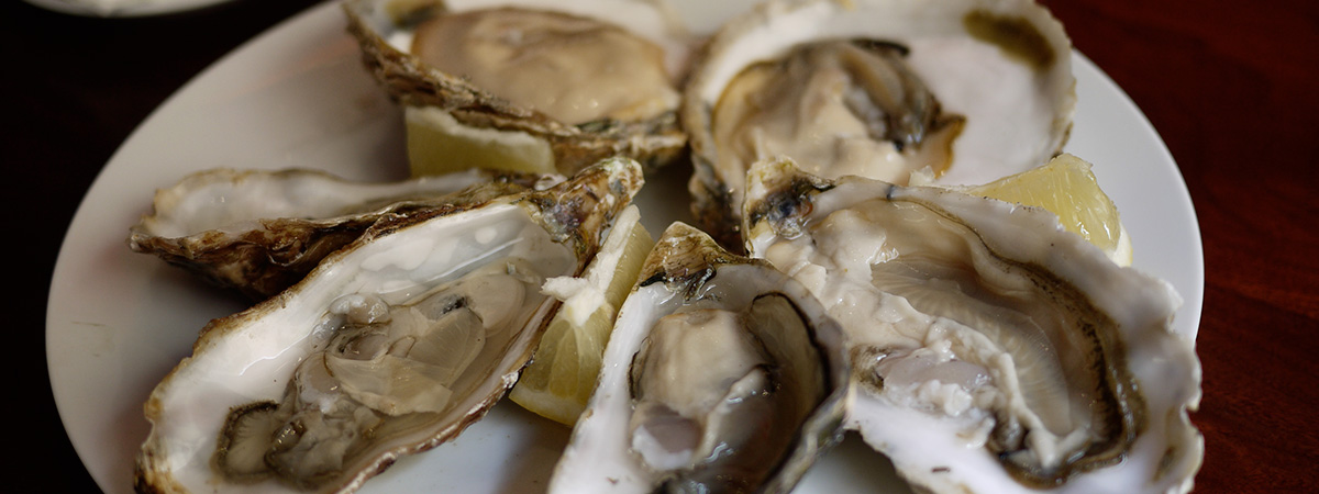 Gastronomie française : les huîtres - French gastronomy : oysters - Gastronomía francesa : las ostras